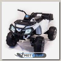 Детский электроквадроцикл BDM 0909 Grizzly Next 4x4